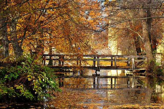 Stiftspark mit Teich